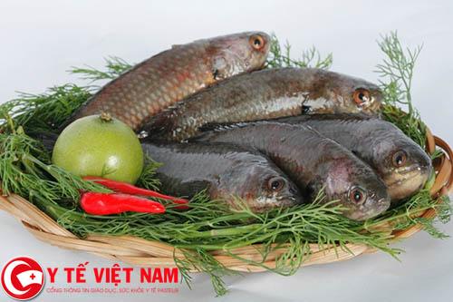 Món cá rô om lá lốt chữa bệnh gout không cần dùng thuốc