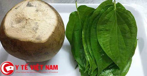 Công dụng chữa bệnh gút của lá trầu và nước dừa