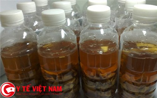 Sử dụng rượu cây lược vàng để chữa bệnh