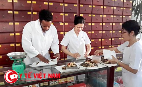 Việc làm dược sĩ y học cổ truyền tại Đà Nẵng