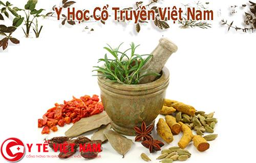 Y học cổ truyền Việt Nam và những kiến thức không phải ai cũng biết