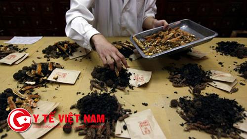 Tuyển gấp Dược sỹ Y học cổ truyền tại Đà Nẵng đi làm ngay