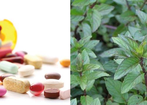 Các Bác sĩ Đông Y khuyên chỉ nên dùng thuốc nam như một biện pháp hỗ trợ điều trịt