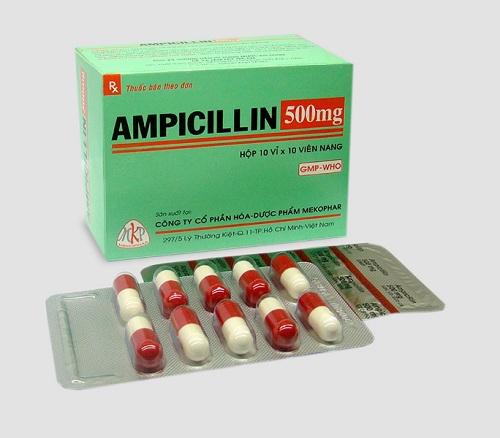 Dược sĩ Cao đẳng hướng dẫn cách dùng thuốc Ampicilin đúng liều lượng