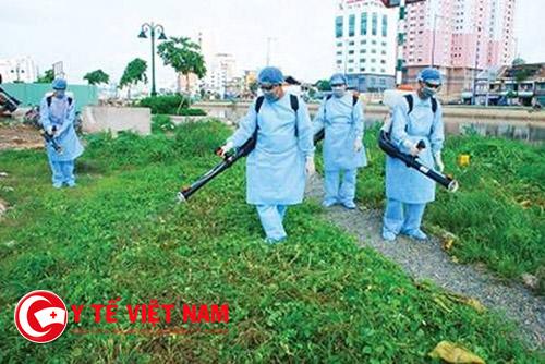 Phun thuốc diệt muỗi và giữ vệ sinh môi trường là biện pháp hữu hiệu phòng bệnh