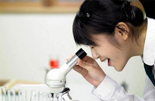 Trường Cao đẳng Đại Việt Sài Gòn về Bộ Lao động TB&XH quản lý