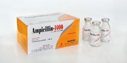 Những tác dụng phụ thông thường của thuốc Ampicillin