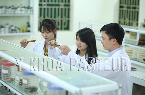 Địa chỉ học chuyển đổi văn bằng 2 Trung cấp Dược uy tín tại Hà Nội