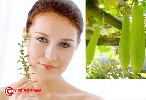 Nhựa mướp hương là cách chống nắng cho da tự nhiên