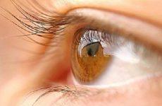Người già thường mắc các bệnh chuyên khoa mắt như bệnh tăng nhãn áp