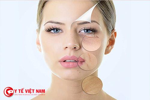 Collagen và elastin giúp phục hồi làn da lão hóa