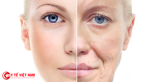 Làn da lão Làn da lão hóa do thiếu collagenhóa do thiếu collagen