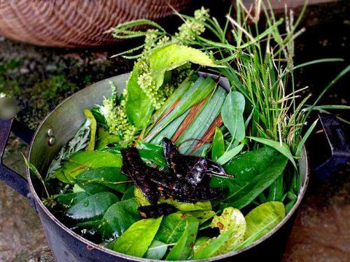 Nồi lá xông gồm lá sả, hương nhu, lá bưởi, tía tô, lá chanh… xông trị cảm cúm rất hiệu quả.