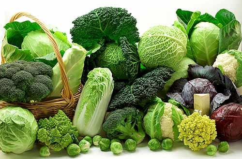 Rau xanh tốt cho sức khỏe