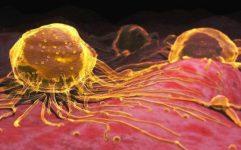 Nano vàng không có tác dụng chữa ung thư