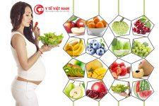 Mẹ bầu có chế độ dinh dưỡng khoa học, hợp lý