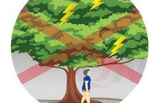 Bỏ túi kỹ năng phòng tránh thương tích mùa mưa bão