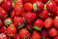 Những lợi ích không ngờ của dâu tây đối với sức khỏe