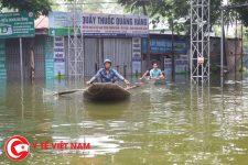 Cảnh báo nguy cơ bùng phát dịch đau mắt đỏ ở vùng lũ lụt