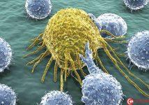 Hot: Phát hiện hóa chất mới tiêu diệt tế bào ung thư não