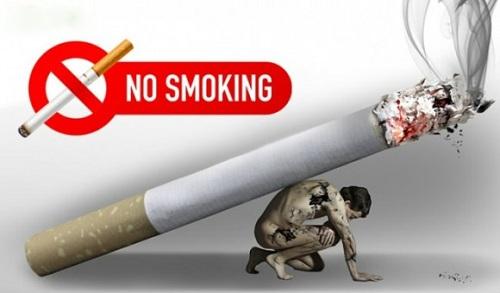 Hút thuốc lá rất độc hại đối với sức khỏe