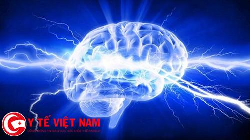 Nghệ giúp cải thiện chức năng não và giảm nguy cơ các bệnh não
