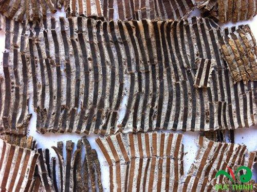 Bộ phận được dùng làm thuốc là vỏ cây đỗ trọng