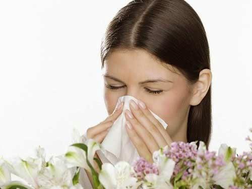 Bác sĩ tư vấn điều trị viêm mũi dị ứng hiệu quả bằng cách dân gian
