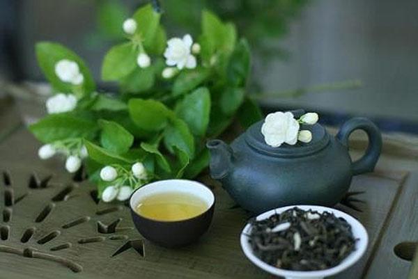 Giảm cân giữ dang hiệu quả và an toàn với trà hoa nhài