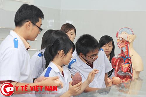 Ứng dụng công nghệ 3D vào giảng dạy trong các giờ thực hành cho sinh viên y khoa