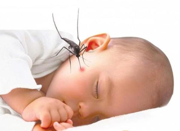 6 biện pháp phòng bệnh sốt xuất huyết ở trẻ em hiệu quả