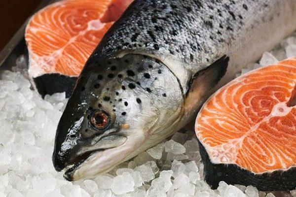 Cá hồi là một trong những thực phẩm mà bệnh nhân nên sử dụng